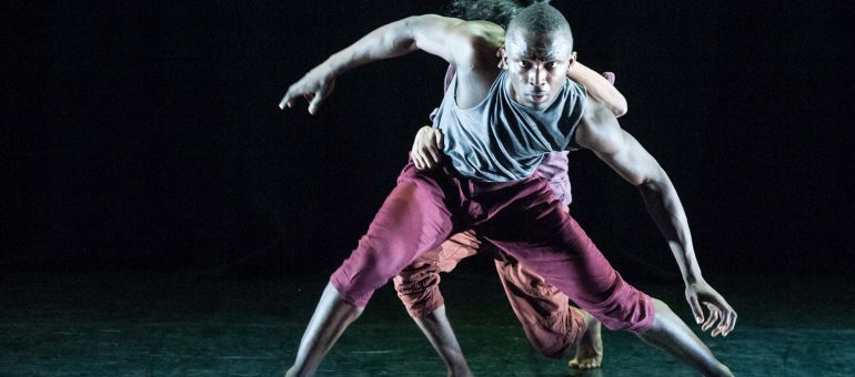 Dam Van Huynh appointed Dance United first Associate Artist